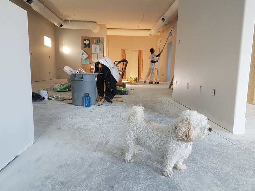 home renovation mistakes