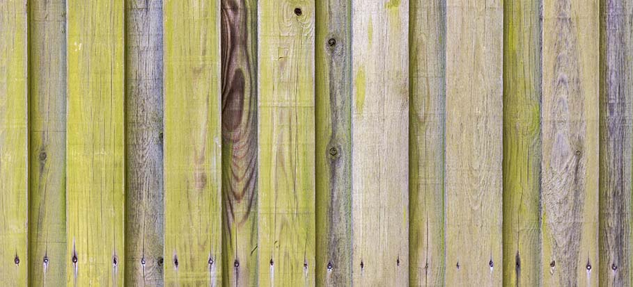 why do wooden fences turn green